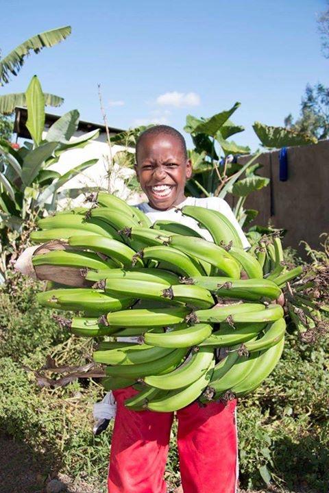 David mit geernteten Bananen